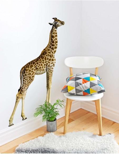 Stickers Photo,Sticker photo animal: girafe