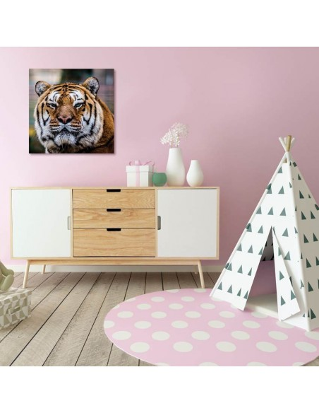 Tableaux Animaliers,Tableau photo: tigre