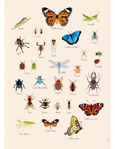 Poster enfant,Poster Géant plastifié: Insectes